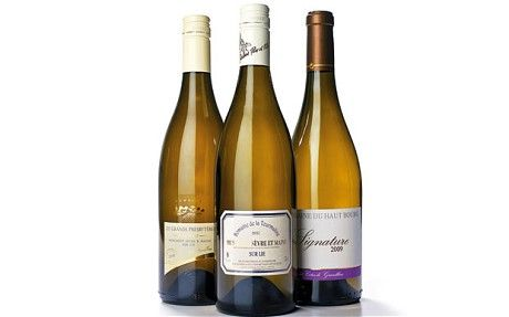 Wine Tasting Notes: Must-Have Muscadets   SHOPPING NEWS
