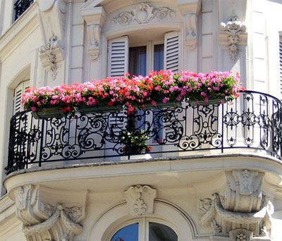 Everything a Balcony Ever Wanted To Be! | From peoniesncupcakes | | { Houseplants 3 #flowers: