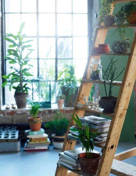 Diseño de interiores. Plantas.