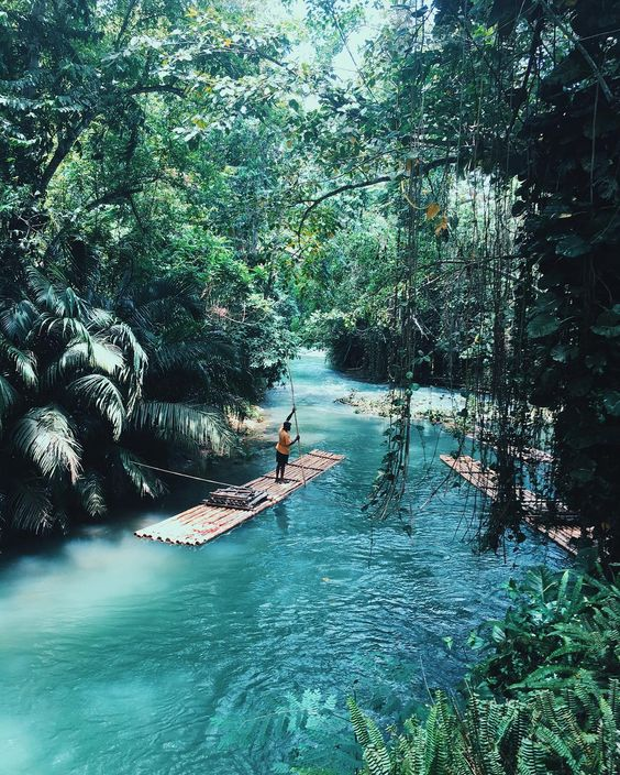 Like something out of Jungle Book on the other side of the world - it looks like a peaceful way to travel around