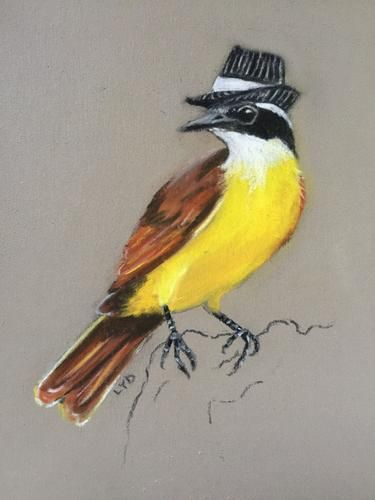 Great Kiskadee in a Fedora