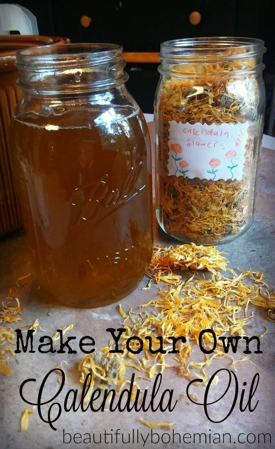 Make your own calendula oil! Easy remedy for cuts, burns, rashes, and more!