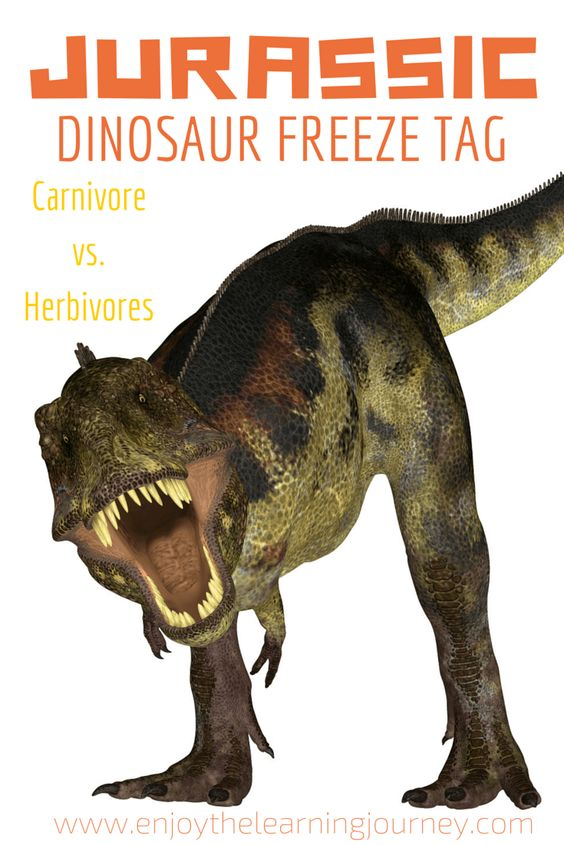 Dinosaur fans will love this version of freeze tag. An inexpensive dinosaur birthday party game that keeps kids active!