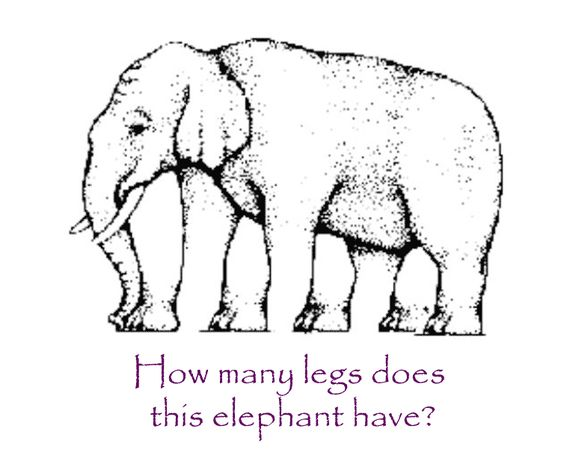 illusions optical google illusion legs kid elephant visual cool crazy eye does leg games perception brain paradox profile psychology draw