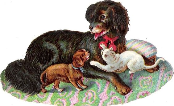 Oblaten Glanzbild scrap die cut chromo Hund  12,5 cm dog Katze cat puppy chat: