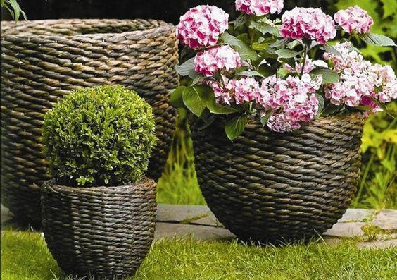Vasos e floreiras
