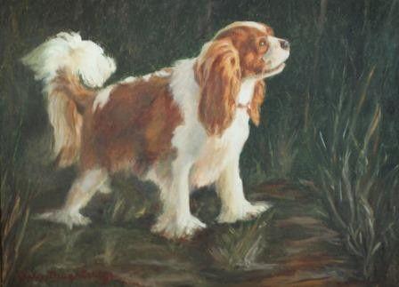 Cavalier King Charles by Clara Daughtridge – Morris & Essex Kennel Club
