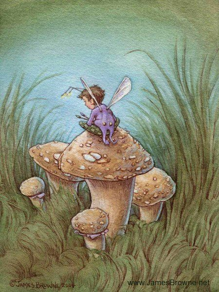 Sitting on a mushroom James Browne: