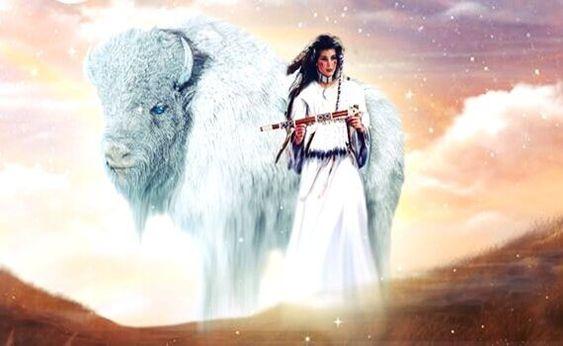 Découvrez la prophétie amérindienne de la femme bison blanc, une prophétie à laquelle s'attachent encore actuellement de nombreux Indiens d'Amérique.