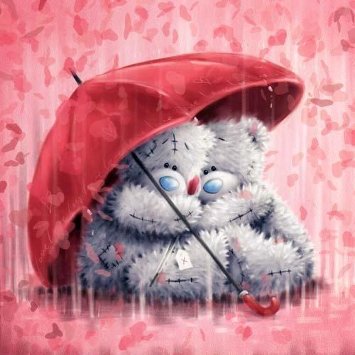 Tatty Teddy In The Rain