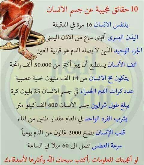 10 حقائق عجيبة عن جسم الانسان Ex Quotes Islamic Pictures Free Pdf Books
