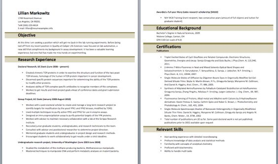 Bilingual Recruiter Resume  Resume    Sample Resume