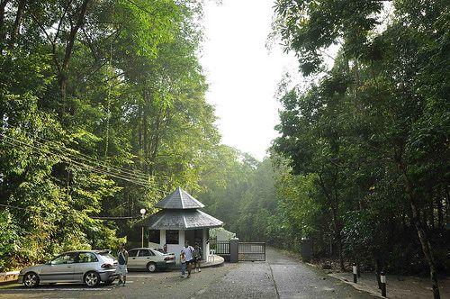 Kubah National Park Waterfall Kubah 002 Kuching Waterfall National Parks