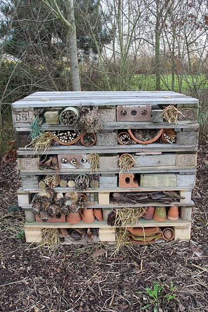 Bug Hotel *fixed link Provide a home to pollinators and pest controllers. Tidy gardens, lawns and lack of dead wood, mean less and less habitat for wild bees, spiders and ladybugs.