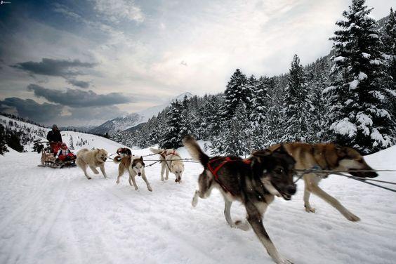 www.traveltoaleecia.com #Alaska