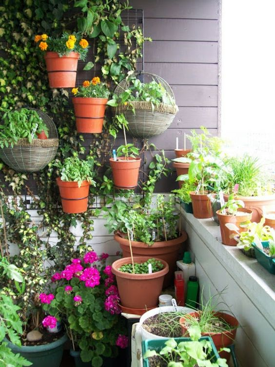 Super idées jardins! Plein d'autres! (pots de fleurs mural)