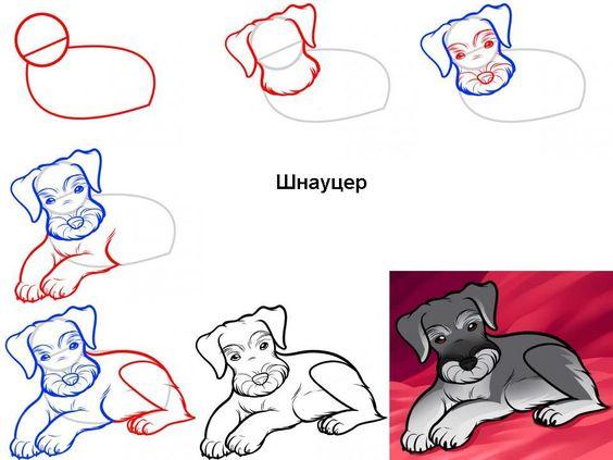 Уроки рисование картинки 9 лет