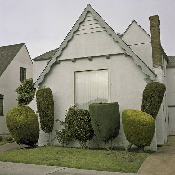 hedges: Kurtmanley, Kurt Manley, Edward Scissorhands, Shrub, House, Place, Photo