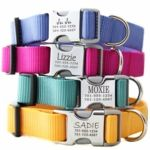 Personalized Dog Collars, no more jingling sounds!