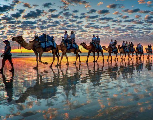 Camel Safaris at Cable Beach, Australia