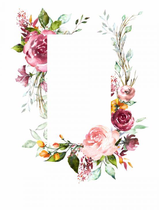 17 Floral Png Transparent Framed Flower Art Flower Art Flower Wreath Illustration