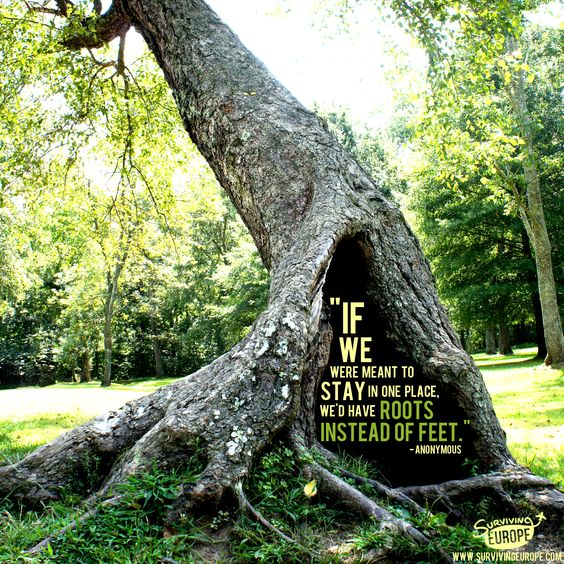 """If we were meant to stay in one place, we'd have roots instead of feet."""
