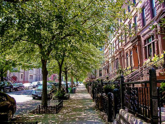 Leben wie ein echter Brooklynite in Bedford-Stuyvesant