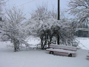Winterbank, gesehen auf einem unserer Winterspaziergänge