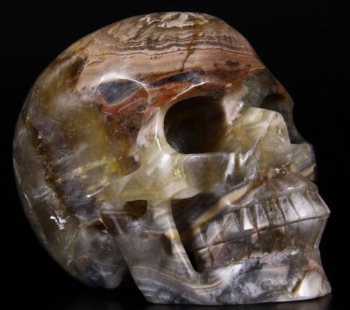 "Huge 5.2"" FLUORITE Carved Crystal Skull Realistic Crystal Healing #815 https://t.co/jDzBfg2OoD https://t.co/BXDtC2fmXi"