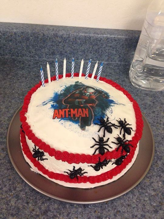 Ant Man Cake Design : Ant man cake. Edible image and ants from Amazon ...