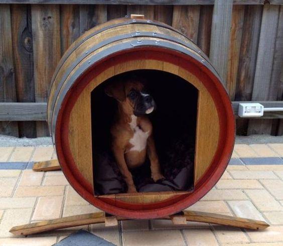 C mo hacer una casa para perro de exterior casetas for Construir casa de perro