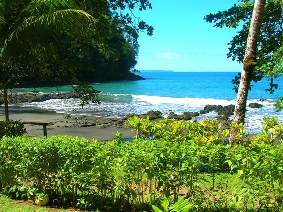 ❤ Thank you for posting your pic. One of my favorite places!  Campanario Biological Reserve - Osa Peninsula, Costa Rica ~