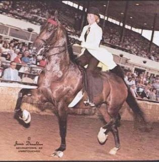 Popular Time and Mary Gaylord