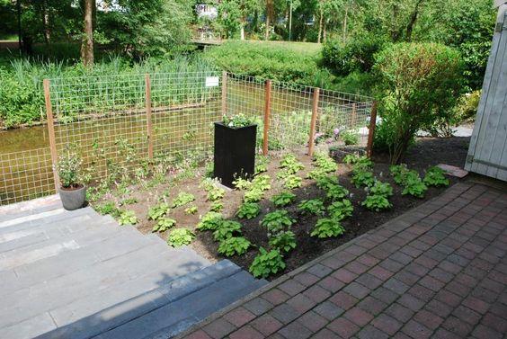 Gelaagde tuin aan waterkant | Exalto Hoveniers