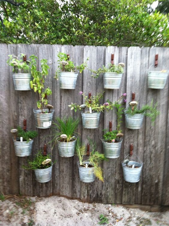If you 39 re renting or find it hard to make decisions Herb garden wall ideas