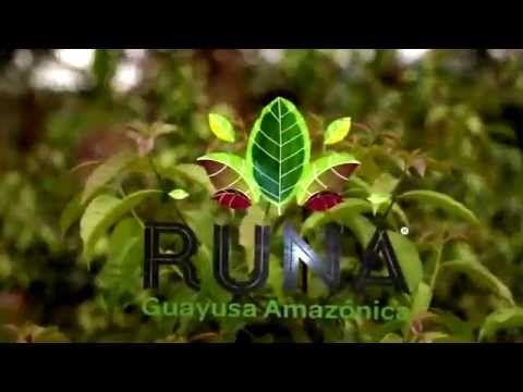 RUNA Guayusa Amazónica