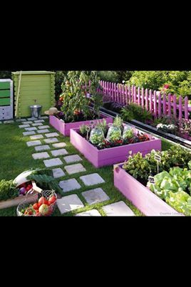 Raised beds with color!!