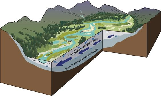 Gravel-Bed Rivers Most Important Feature in Mountainous Western North America  --  https://www.usgs.gov/center-news/nature-gravel-bed-rivers-most-important-feature-mountainous-western-north-america
