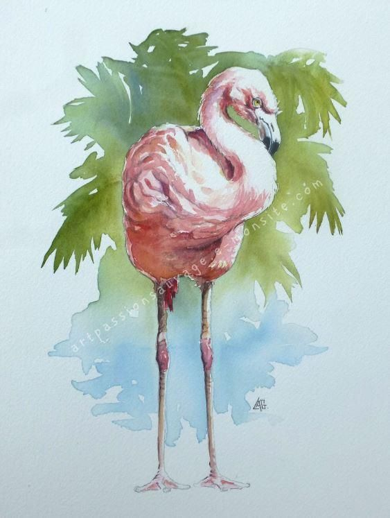 Flamant Rose Aquarelle Aquarelle Art A Theme Oiseau Aquarelle Rose