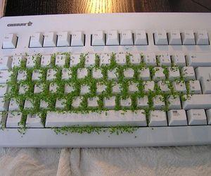 Hasil carian imej untuk green tumblr