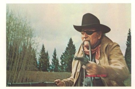 True Grit.    Ned Pepper: I call that bold talk for a one-eyed fat man.  Rooster Cogburn: Fill your hands you son of a bitch!