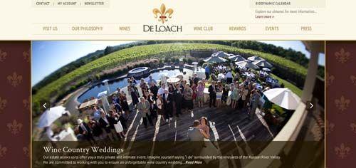 Ejemplos de paginas web de bodegas de vino