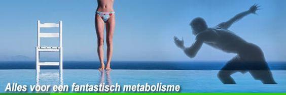 Metabolisme en voeding