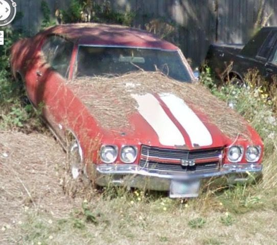 Chevelle Abandoned Cars Junkyard Cars Barn Find Cars