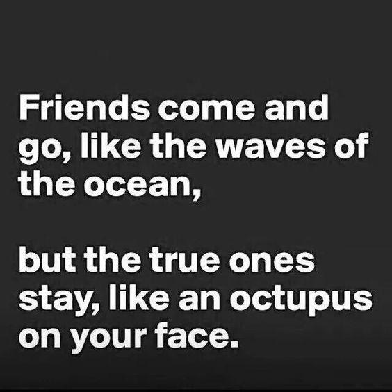 Friends and octos
