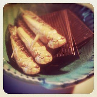 Sprinkhanen in chocolade recept. Lekker!!! Applepiepieces blog