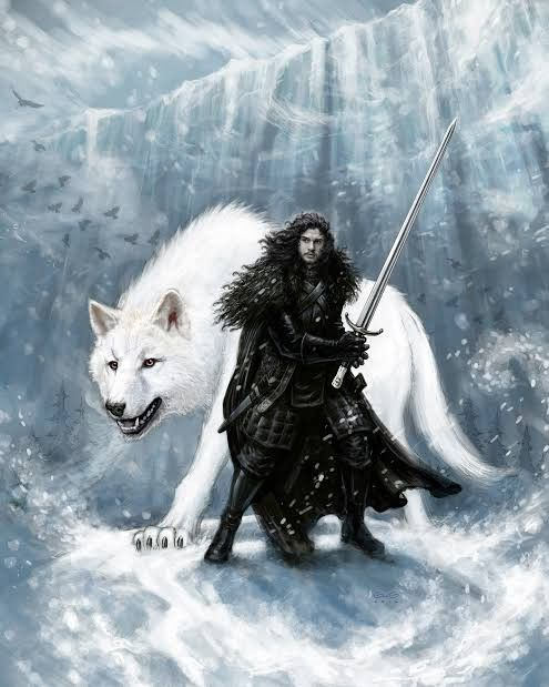 Ghost Of Winter Jon Snow Art Jon Snow Wolf Jon Snow Aesthetic
