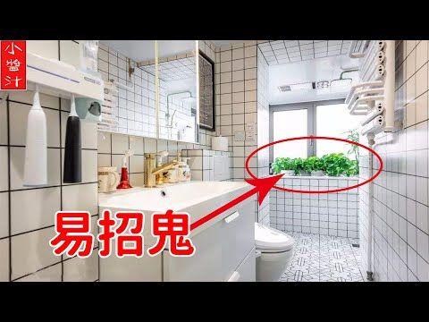 植物風水 千萬要注意 綠蘿擺在這些位置 易招鬼 破財 毀健康 Youtube In 2020