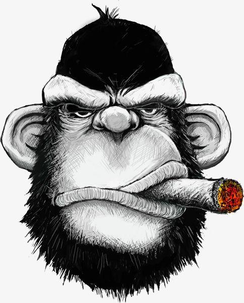 Black Gorilla Monkey Art Gorillas Art Gorilla Illustration