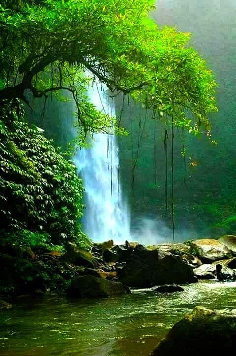 Very Nice Falls From Google Plus Naturbilder Landschaftsfotografie Naturfotografie